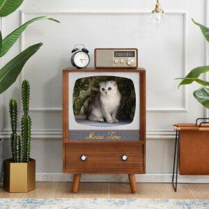 Katze im TV
