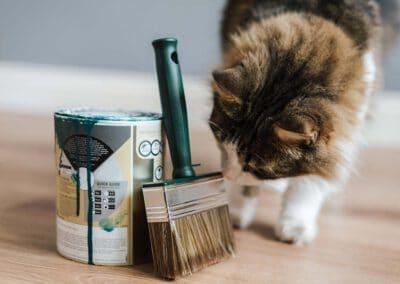 Do it yourself – Katzenspielzeug günstig selber basteln