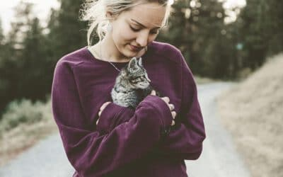 Hoch hinaus: Wie du Katzen richtig hochhebst